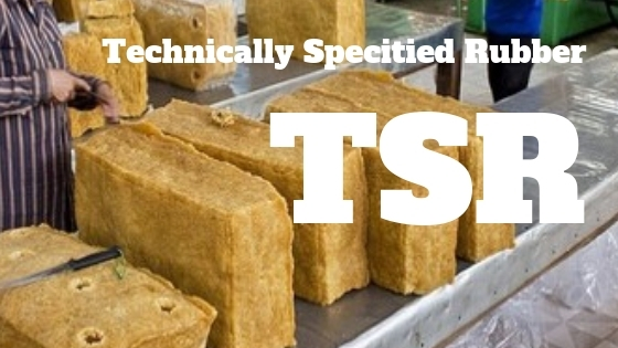 TSR(技術的格付けゴム)を紹介する特別番組を全5回シリーズで公開します