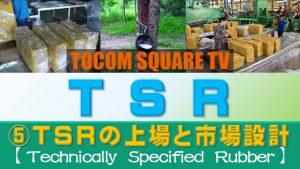 Part.5 TSR20の上場及び商品設計について【TSR(技術的格付けゴム)取引のポイント】
